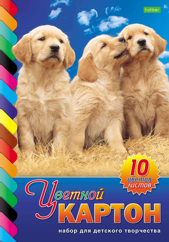 Картон цветной А4 10л 10цв Три щенка одност склейка