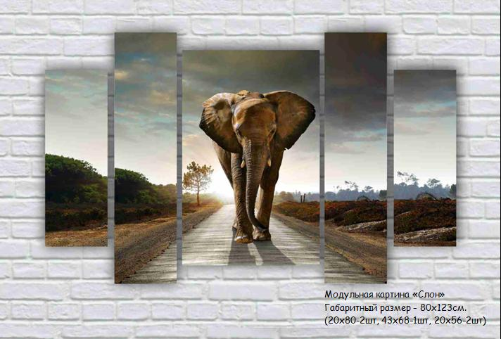 Модульная картина Слон площадь 1,03