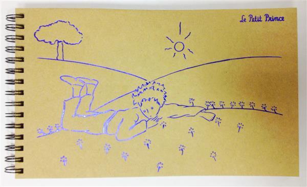 Альбом д/зарисовок А5 Маленький принц