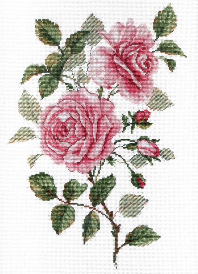 Творч Вышивка крестом 35х25 Садовые розы