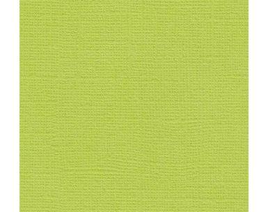 Бумага д/скрап Кардсток 30,5*30,5 Салатовый текстурированный