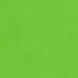Бумага д/скрап Кардсток 30,5*30,5 Ярко-зеленый текстурированный