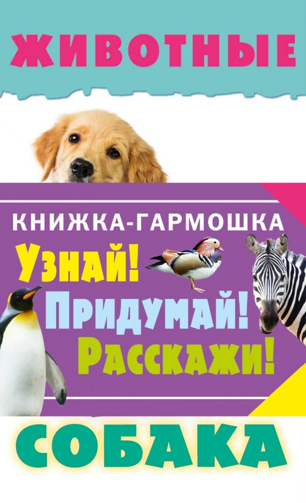 Животные: Собака