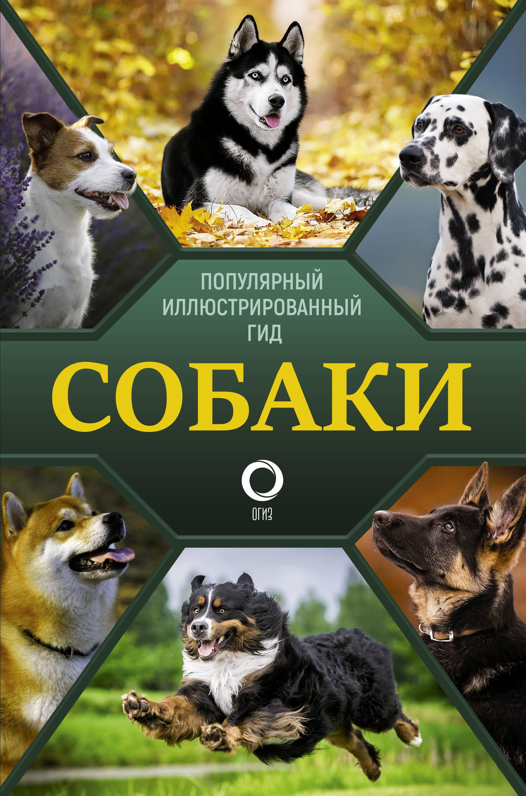 Собаки. Популярный иллюстрированный гид