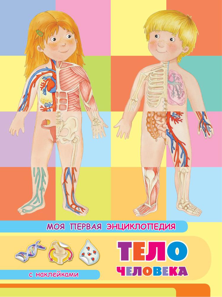 Тело человека: Моя первая энциклопедия
