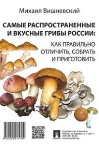 Самые распространенные и вкусные грибы России: как правильно отличить....