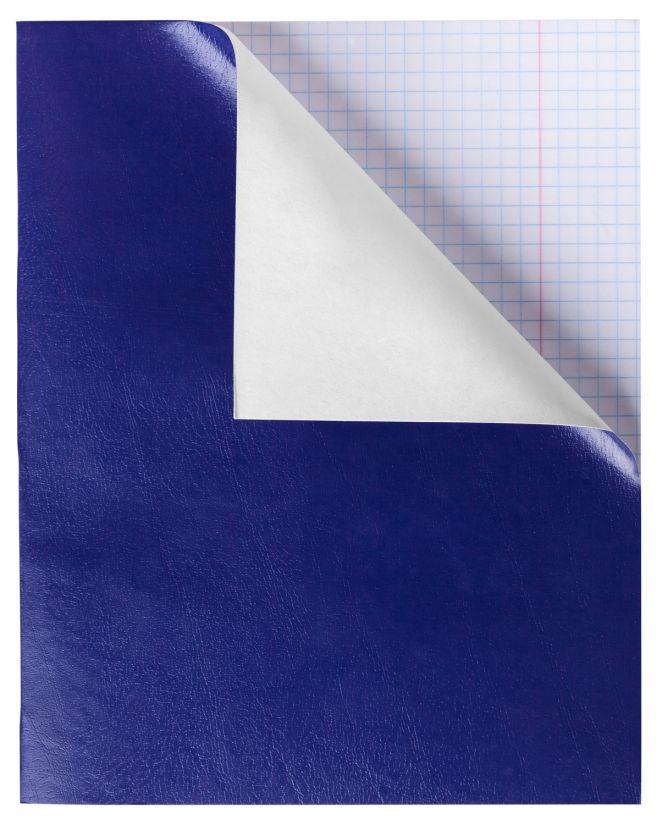 Тетрадь 48л кл Бумвинил синий