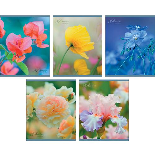 Тетрадь 48л кл Нежные цветы