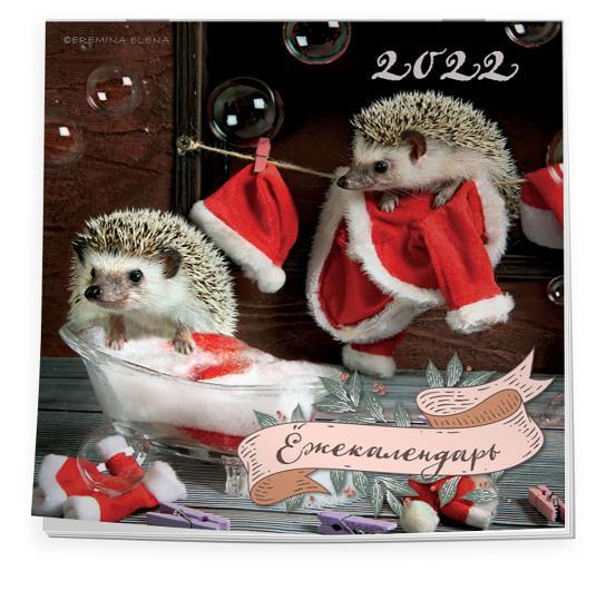 Календарь настенный 2022 Ёжекалендарь (Санта Клаус)