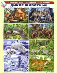 Комплект плакатов Дикие животные: 8 плакатов