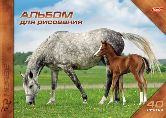 Альбом д/рис 40л спир Horses