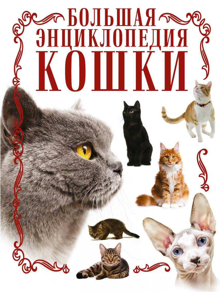 Кошки: Большая энциклопедия