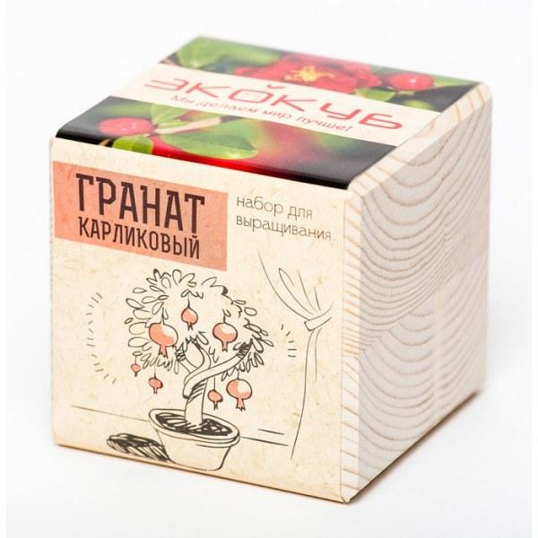 Набор для выращивания Экодом Premium Гранат карликовый дерев куб
