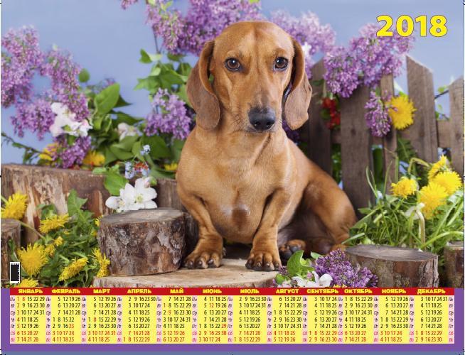 Календарь листовой 2018 Л-60АТ Символ года. Пес у забора