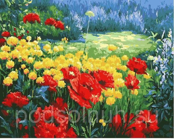 Картина по номерам 40*50 Маки и полевые цветы