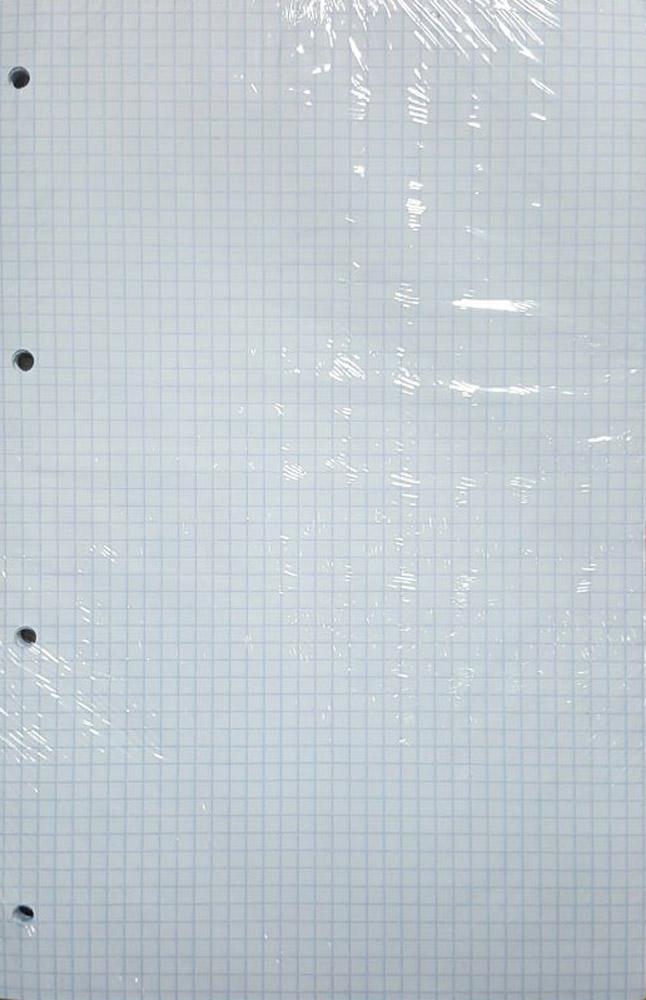 Блок сменный для тетради А4 48л кл на кольцах