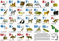 Плакат Азбука разрезная (животные)