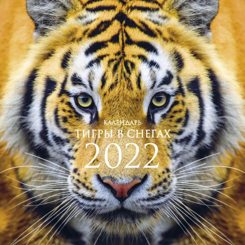 Календарь настенный 2022 Тигры в снегах