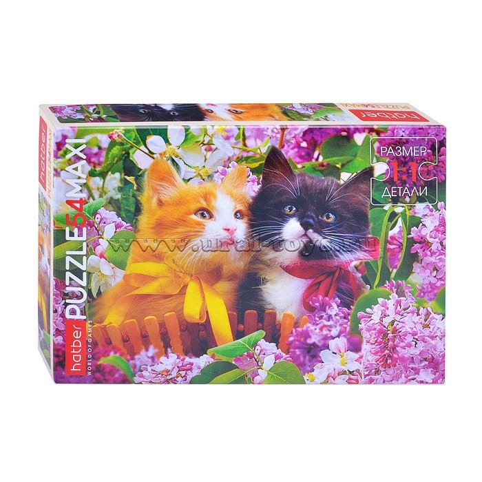 Пазл Maxi 54 Два котенка