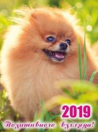 Календарь карманный 2019 МП-206 Позитивного взгляда! с подставкой